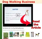dog-walking-business