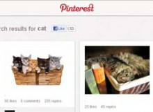 Search Pinterest People